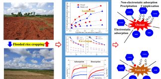土壤与农业可持续发展国家重点实验室